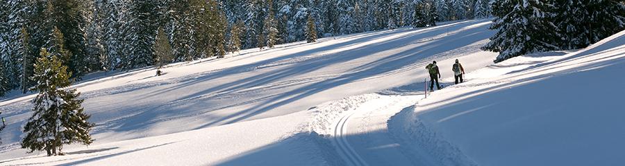 Skiline - General info about ski resort Sörenberg