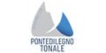 Logo Skigebiet Pontedilegno-Tonale